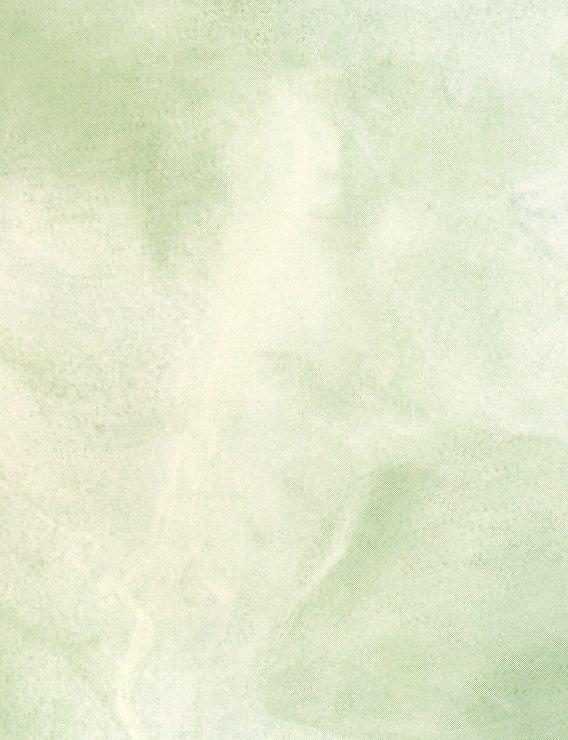 Plakfolie Marmer 4020 - 45cm x 15m