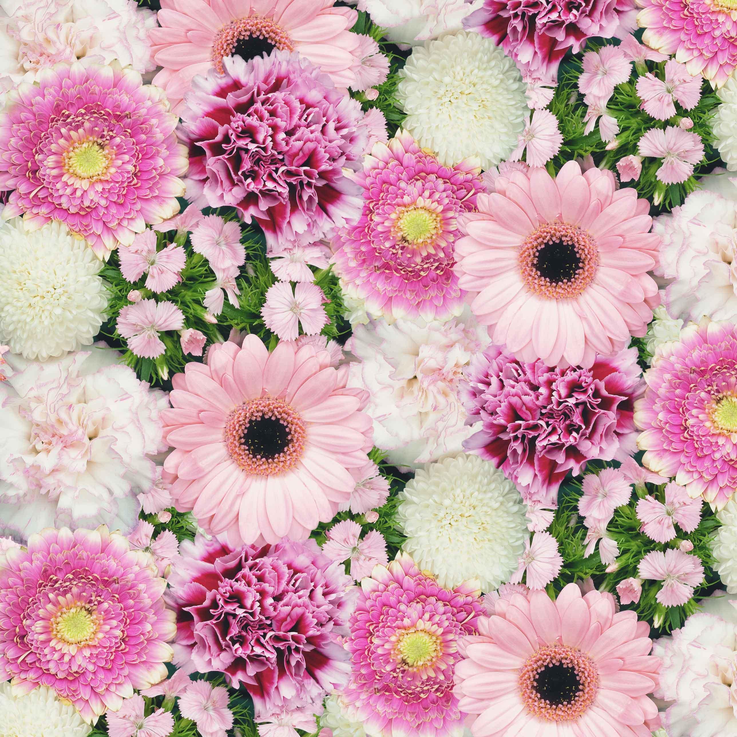 Plakfolie Flowers 6225 - 45cm x 15m